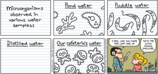 "FoxTrot by Bill Amend - ""Cell Phony"" published March 1, 2020 - Microorganisms observed in various water samples: Pond Water, Puddle Water, Distilled Water, Our Cafeteria's Water. Teacher: I feel like you made this last one up. Paige: Says the loyal school employee."